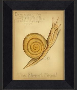 MI Forest Snail