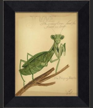 MI Praying Mantis