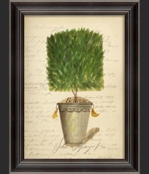 LS Topiary 06