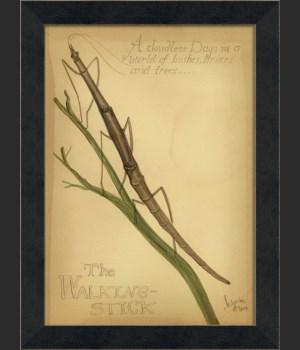 MI The Walking Stick