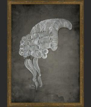NT Savant Wig