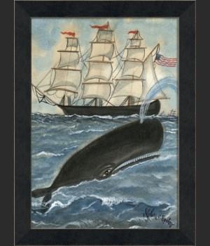MI Whale Spotting