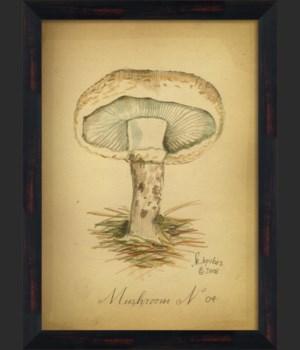 BC Mushroom 04 lg