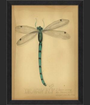 MI Dragonfly