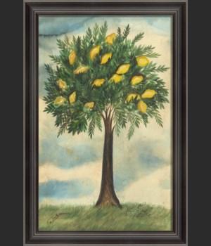 LH Lemon Tree