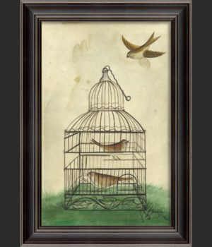 LS Brown Birds in Cage