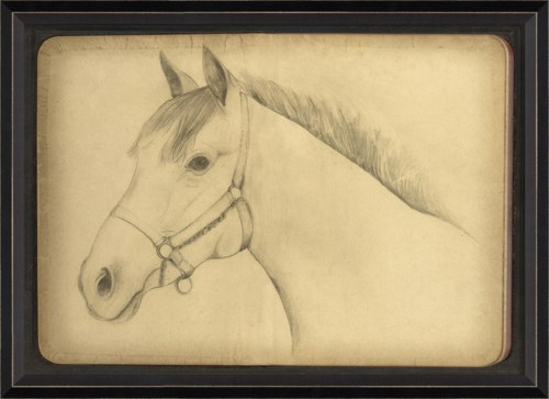 BC Sketch of a Horse