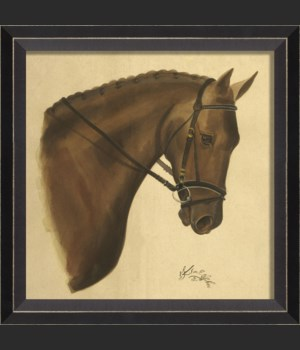 BC Bay Horse