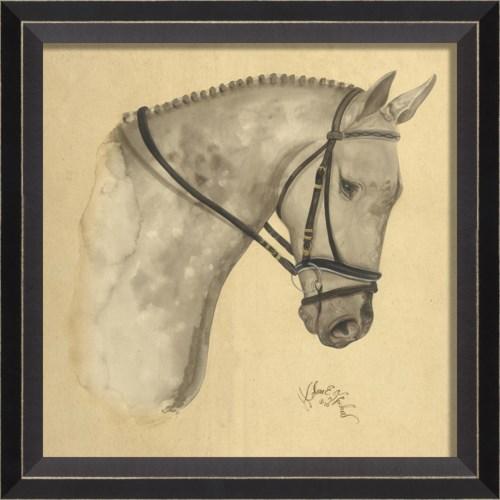 BC Dappled Grey Horse