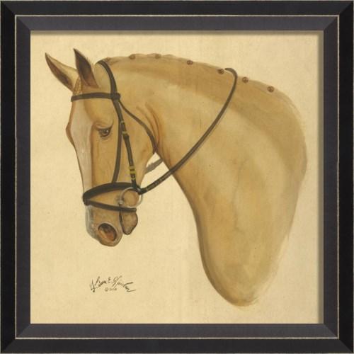 BC Palomino Horse