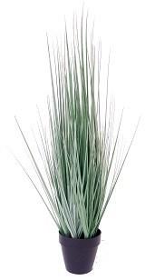 """Onion Grass - 27"""""""