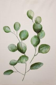 Leafly II