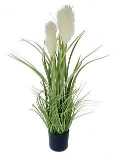 "Reed Grass - 32"""