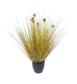 """Onion Grass - 26"""""""