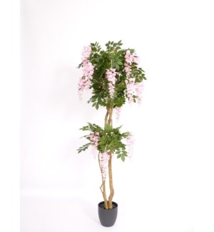 6-FT ARTIFICIAL TREE  - 2/BOX