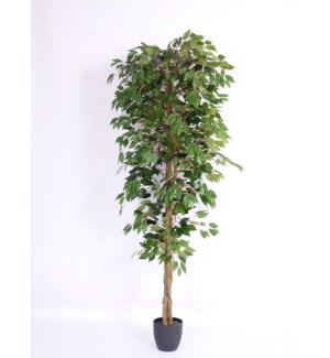 6-FT ARTIFICIAL TREE 2/BOX