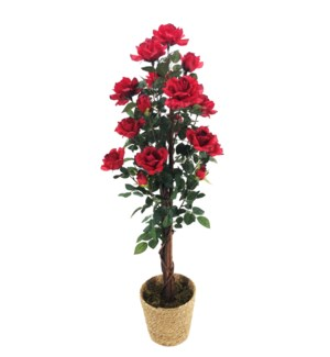 5-FT ARTIFICIAL TREE - 2/BOX