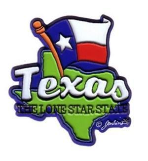Texas 2D Magnet