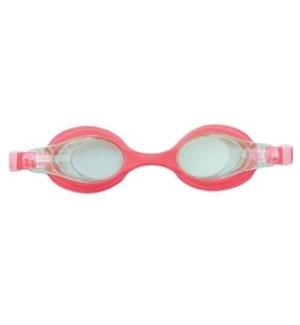 Pro Team Goggles