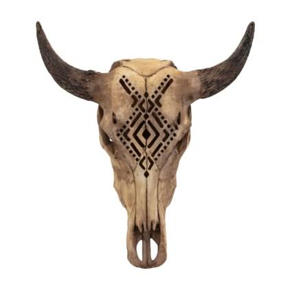 TY Canyon Tahonta Skull