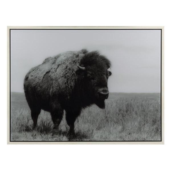Buffalo Framed Acrylic Wall Decor