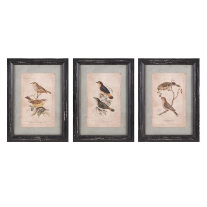 Woodland Bird Wall Decor - Ast 3