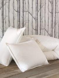 Comforters and Sleep Pillows