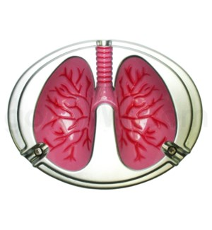 DISC Ashtray LUNGS for Giving Up Smoking