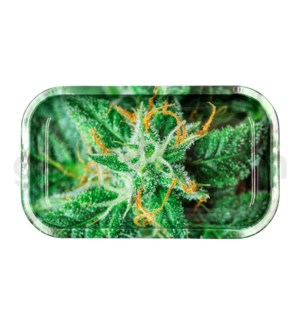V Syndicate 11x7in Medium Rolling Tray- AK-47