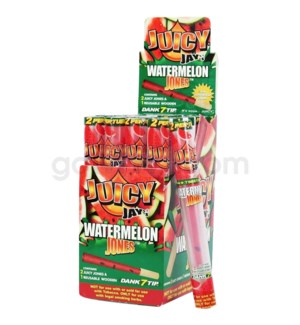 Juicy Jay's- Paper Cones- Watermelon 2pk 24ct/bx
