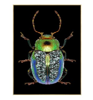 Green Beetle | 24in X 32in X 1in | Framed Tempered Glass Print with Crystal Jewel Accents