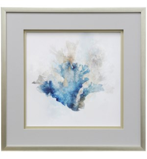 Blue Coral Reef I | 30in X 30in | Shadowed Framed Print Under Glass