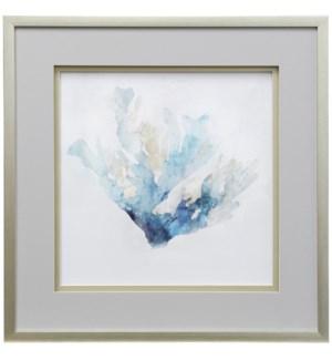 Blue Coral Reef II | 30in X 30in | Shadowed Framed Print Under Glass