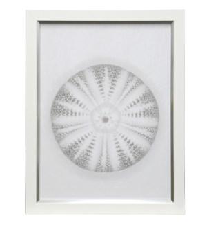 Beach Comber II | 27in X 21in | Framed Print Under Glass