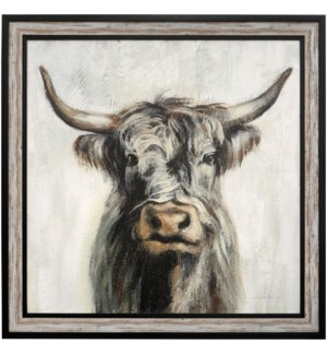 HIGHLAND COW | 41in w X 41in ht | MADE IN USA | TEXTURED FRAME PRINT