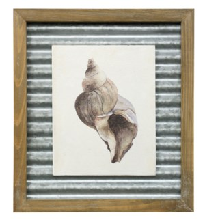 WATERCOLOR SEASHELL II | 16in X 14in | Made in the USA | Textured Framed Print