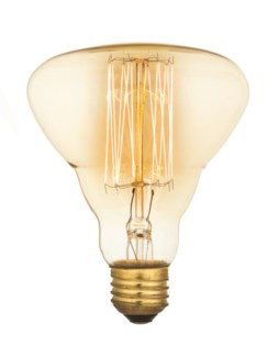 Edison Vintage Antique Bulb