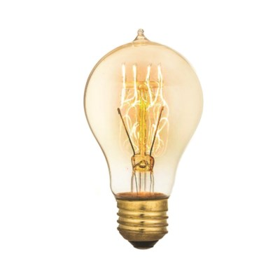 Edison Vintage Antique Bulb