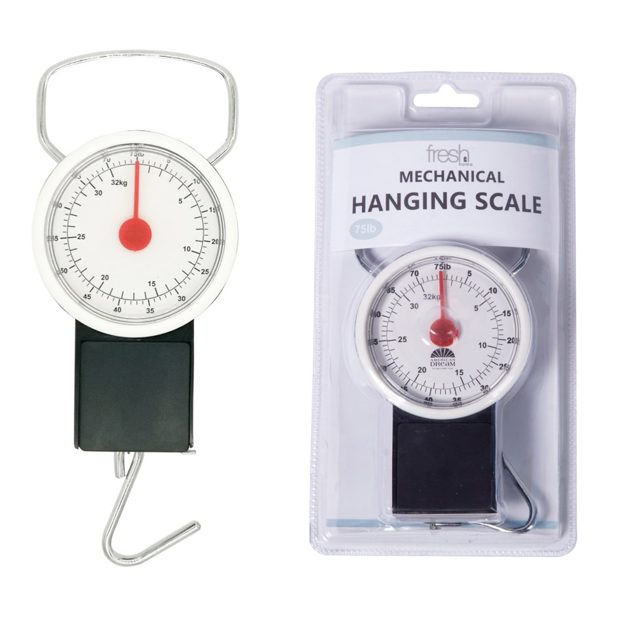 Hanging Scale with a tape (12)