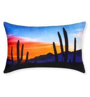 Arizona Multi Throw Pillow - LIQ
