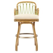 Sona Bar Stool in Nutmeg/Kiwi
