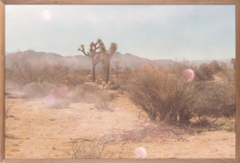 Mystic Desert Print