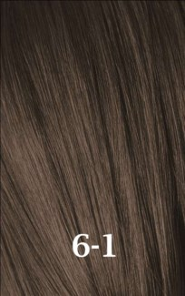 SC IR 6-1 DARK BLONDE CENDRE (LIGHT ASH BROWN)