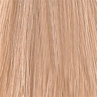 WE COLOR CHARM 1036 (10GV) HONEY BLONDE