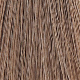 WE COLOR CHARM 462 (6A) DARK ASH BLONDE