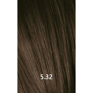 YE COLOR 5.32 LIGHT GOLD VIOLET BROWN 100ML