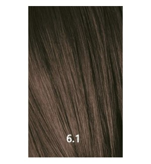 YE COLOR 6.1 DARK ASH BLONDE 100ML