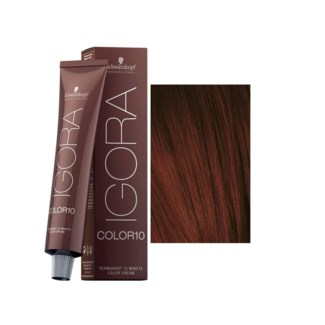 SC COLOR10 4-88 MEDIUM BROWN RED EXTRA 60ML