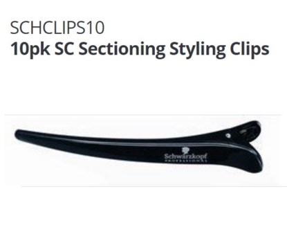SC SECTION CLIPS PACK OF 10 (TOOLS)