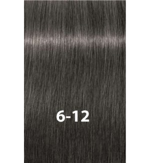 SC IR 6-12 DARK BLONDE CENDRE PLUS